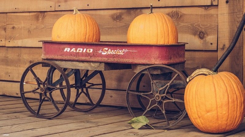 Two pumpkins sitting in a red wagon where families need to learn about their furnace.